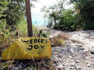 Dive Site Weber's Joy in Bonaire from the road